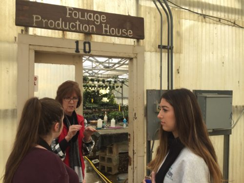 Melinda describes to the gorup what happens in the foliage production house.